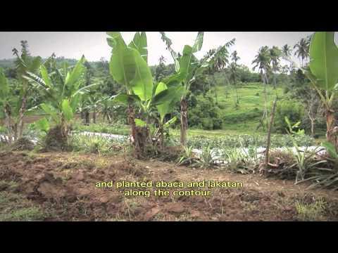 Dirt Rich - Balancing the soil bank