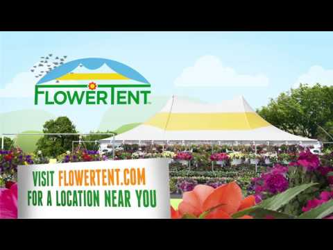 FlowerTent 25th Anniversary TV - 2016 (15 sec)