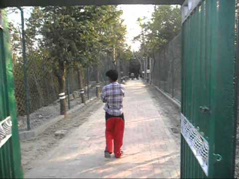 "A short trip to Sundarban with ""Sundarban Tiger Safari"" - Part 1"