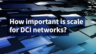 How Important Is Scale for DCI Networks?