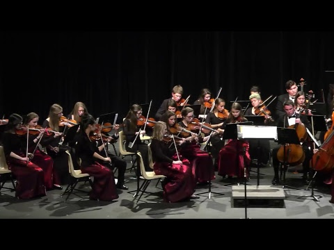 NHS Orchestra Concert
