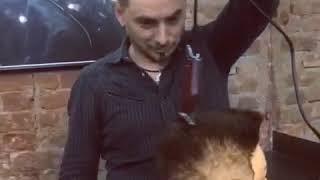 Стрижка площадка, FLATTOP haircut