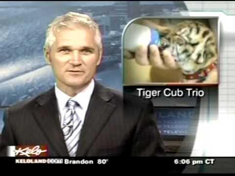 KELO-TV 6pm News, July 2009