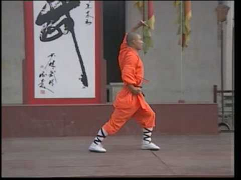 Shaolin Luohan Quan ER LU 少林罗汉拳