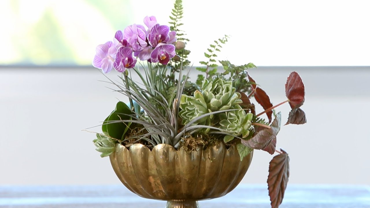 How To Make An Orchid Arrangement Sunset Youtube
