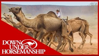 Clinton Anderson  Outback Adventure 6 of 14