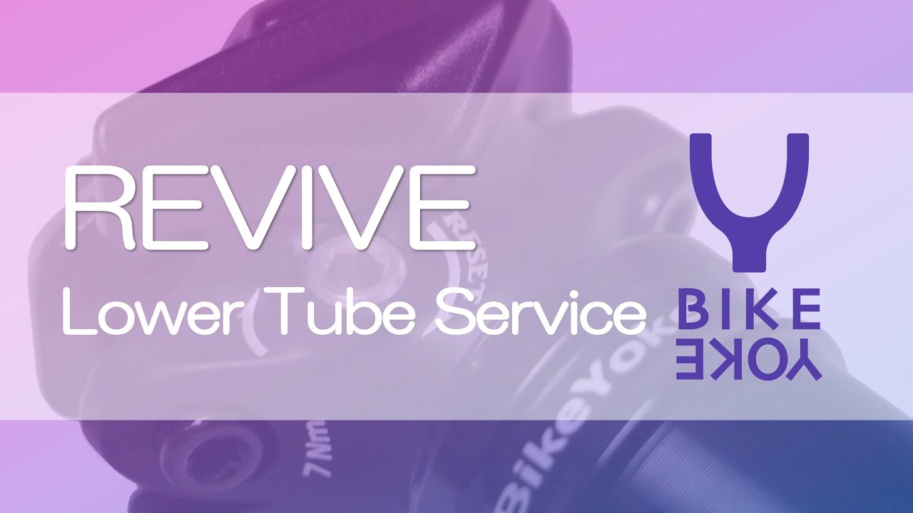 Bikeyoke Revive Divine Lower Tube Service Read Description
