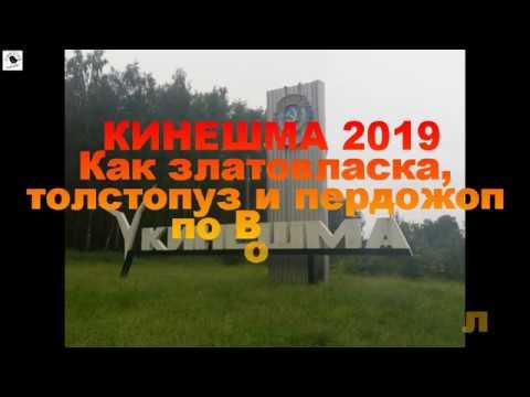 Кинешма 2019