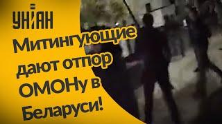 Люди отбиваются от правоохранителей во время протестов в Беларуси