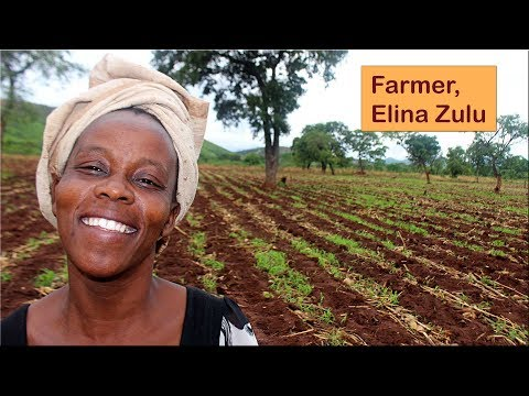 Farmer Elina Zulu wants to expand her business and needs water