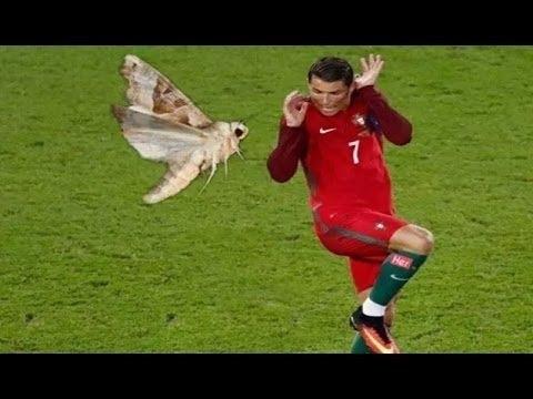 Смешной футбол (40 фото) » Триникси