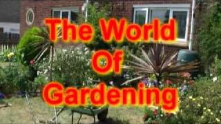 Garden Centres Gardening Tips With Alan, Lancashire Steeplejack Comic Pete Clarke