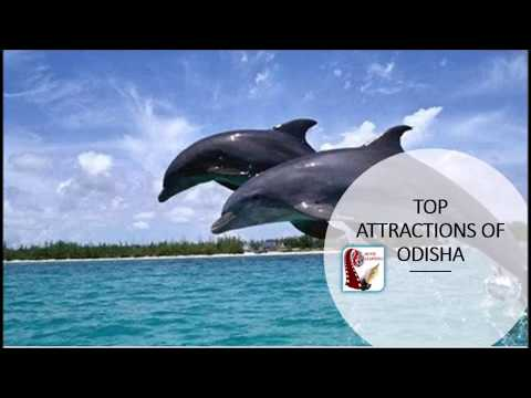 Places to visit in Odisha | Picnic spot & Tourist Attraction | Orissa Tourism India Travel
