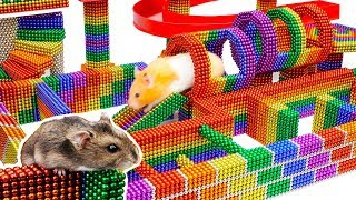 DIY - Build Fantastic Maze For Hamsters Pet From Magnetic Balls (Satisfying) - Magnet Balls
