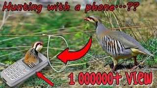 Bird hunting | Smart Boy caught a bird with his phone 😱😱