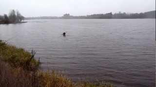 Ephemeral Kayaker Recalled at Lake Vanaja on a Windy November Sunday, 2012