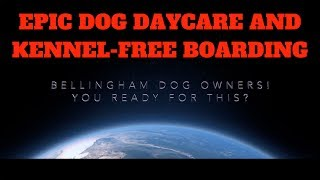 Bellingham Dog Daycare & Kennel Free Boarding Facility Coming Soon!