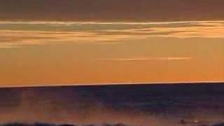 Sausalito Surf