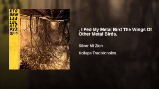 , I Fed My Metal Bird The Wings Of Other Metal Birds.
