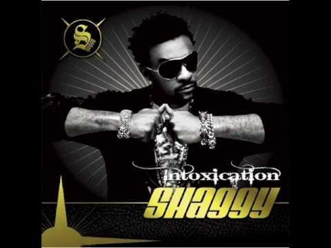 Shaggy Ft. Akon - What's Love