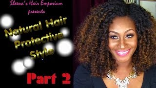 Curly Girls Have More fun: Natural Hair Protective Style Part 2 | Blending Extentions