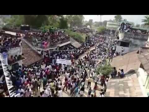 மஞ்சுவிரட்டு ஜல்லிக்கட்டு திருவிழா-1 Manju virattu jallikattu