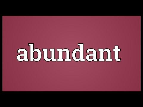 Abundant Meaning