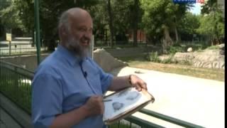 Андрияка С.Н. Уроки рисования 14. Овцебык.mp4