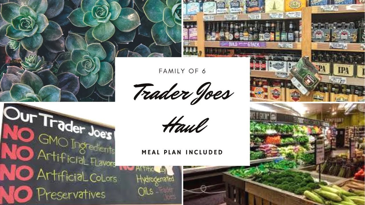 TRADER JOES GROCERY HAUL +(12) DINNER MEAL PLAN IDEAS|FAMILY OF 6 ...
