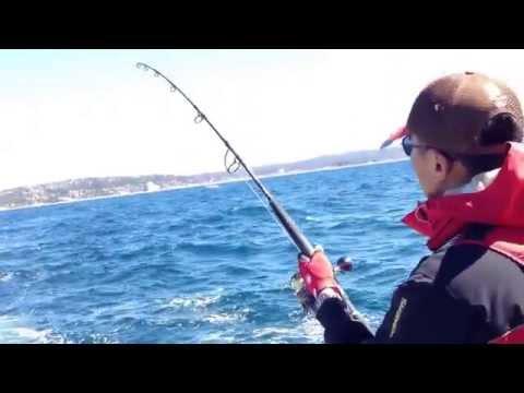Get My Record 98cm King Fish @long Reef Sydney NSW