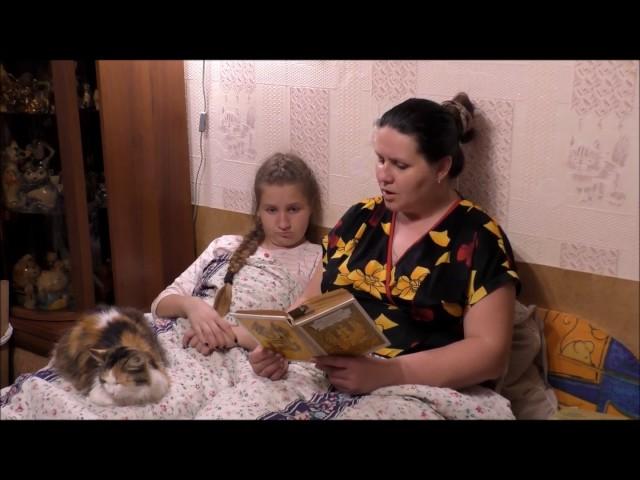 Изображение предпросмотра прочтения – НатальяПолухова читает произведение «Зелёная веточка» Л.А.Кассиля