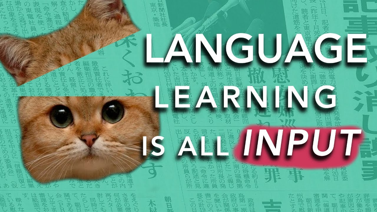 How to Learn a Language: INPUT  (Why most methods don't work)