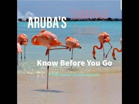 Aruba's 'Flamingo Island' | Know before you go