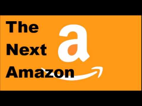 Investing in the Next Amazon
