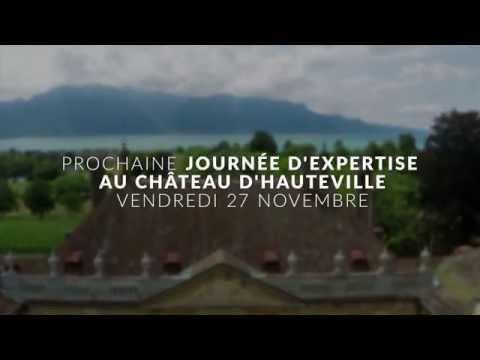 Château d'Hauteville, Journée d'expertise