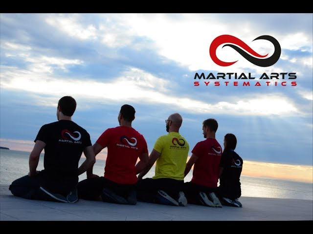 Martial Arts Systematics Sommercamp 2016 in Portorož