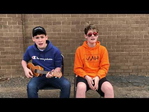 RIP Avicii (Avicii Mashup)    Max & Harvey