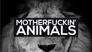 Martin Garrix - Przybieżeli Do Betlejem Zwierzęta (Slupe Christmas Edit)