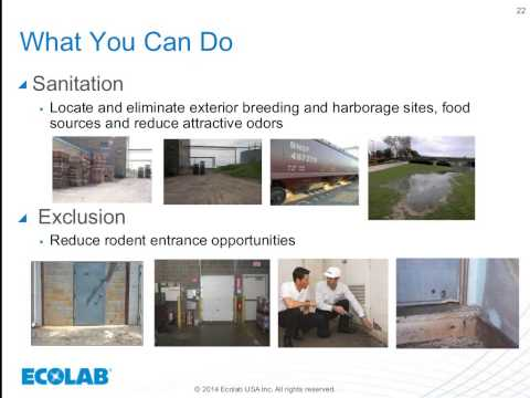 Rodent Readiness - Ecolab August 2014 Food Safety Webinar