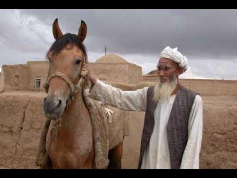 Mezari Şerif ve Türkmenler - Türkistan Yollarında Afganistan Türkmenleri - TRT Avaz