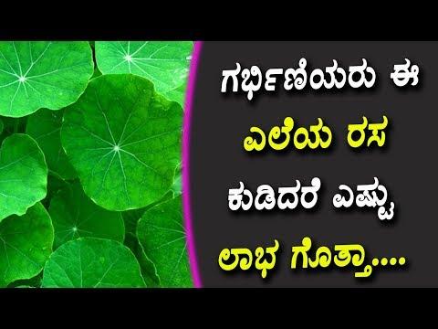 ಗರ್ಭಿಣಿಯರು ಈ ಎಲೆಯ ರಸ ಕುಡಿದರೆ ಎಷ್ಟು ಲಾಭ ಗೊತ್ತಾ.... | Kannada Health tips |