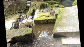 世界文化遺産  関吉の疎水溝