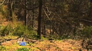 Wildfire Heading Toward Montreat