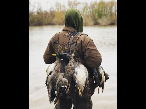 Louisiana Public Land Duck Hunt