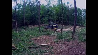 Ponsse Bear  C6 H8, Pierwsze  cięcie