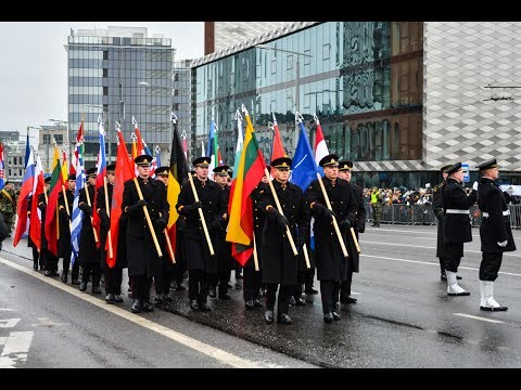 A 100 years of Lithuanian Armed Forces. Parade 2018