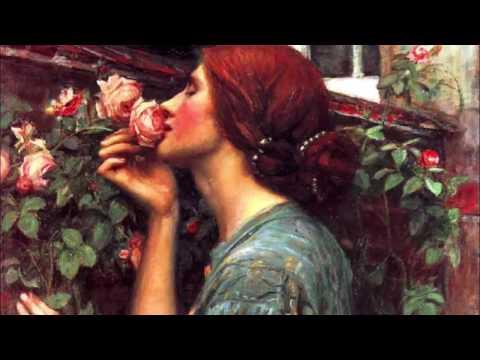 Robert White - The Last Rose of Summer
