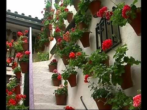 El Jardinero En Casa Nos Vamos De Patios Doovi