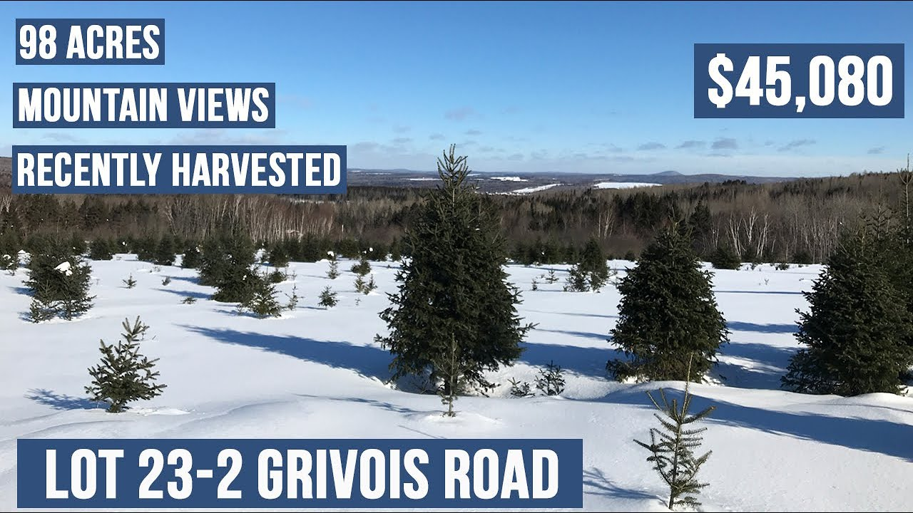 Grand Isle Forest Land For Sale | Maine Real Estate