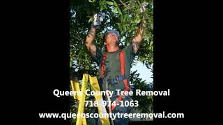 Queens County Tree Removal Video Commercial.wmv